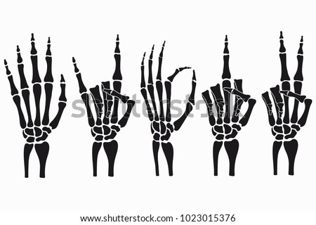 Skeleton Hand Gestures Set Collection Handdrawn Stock Vector Hd