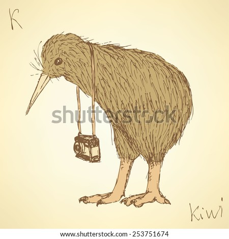 Sketch fancy kiwi bird in vintage style, vector