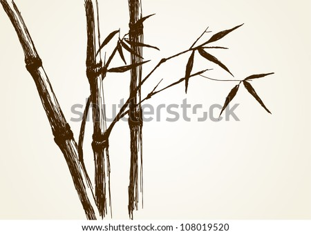 Sketch illustration of bamboo tree - stock vector