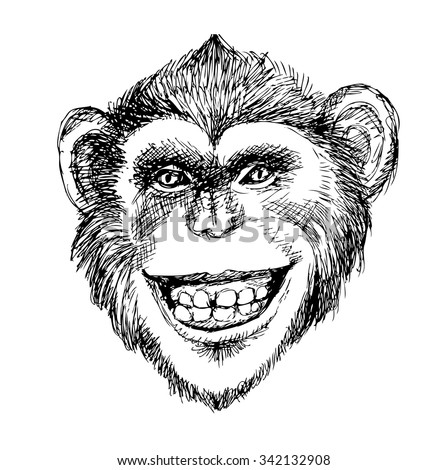 Baboon Face Drawing