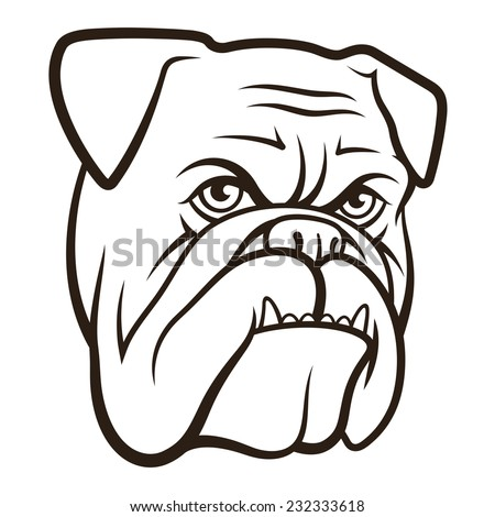 Sketch of a bulldog head, isolated on white - stock vector