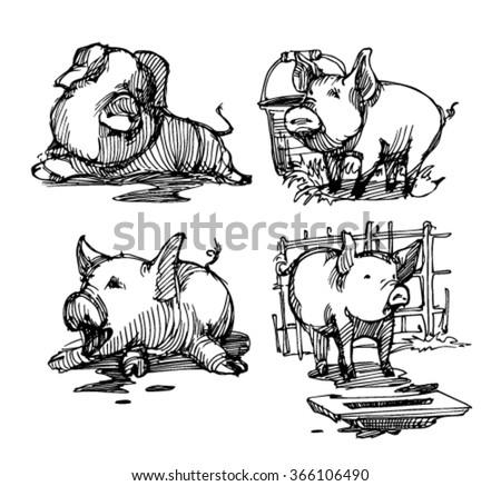 Sketch of animal. Sketch of pig. Farm. Animals in farm. Village.Dirty pig. - stock vector