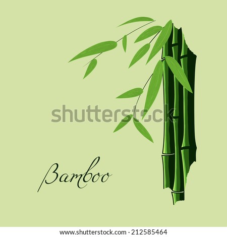 Sketch of bamboo. Stems, leaves and branches. Place for your text (copy space) - stock vector