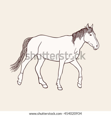 Sketch of beautiful running horse on beige background. Art vector illustration