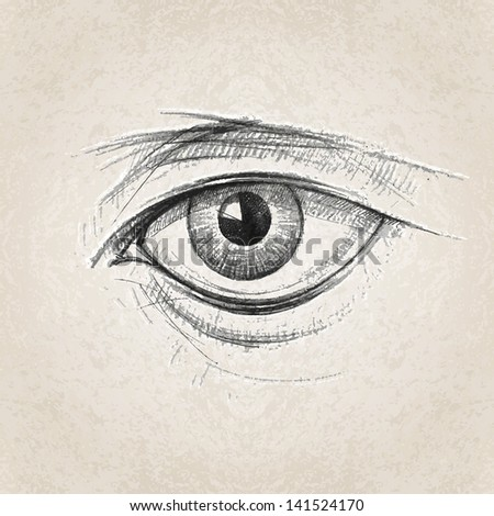 Sketch of beautiful woman eye
