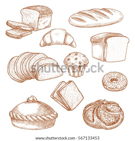 Sketch Of Bread And Pastry Food Loaf Sliced Anadama French Baguette Cereal