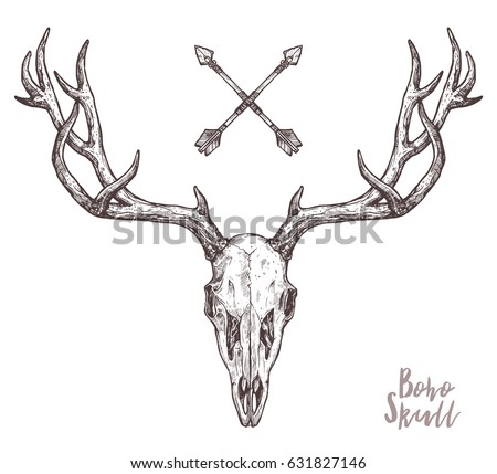 Ox coloring pages