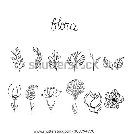 Sketch of floral elements for your design. Set of hand drawn floral page elements