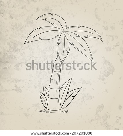 sketch of the palm tree on grunge background - stock vector