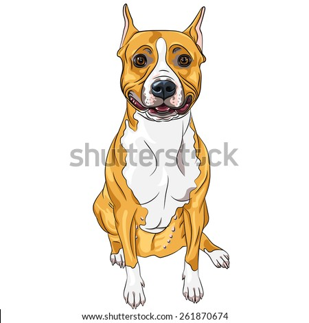 sketch of the smiling dog American Staffordshire Terrier breed sitting - stock vector