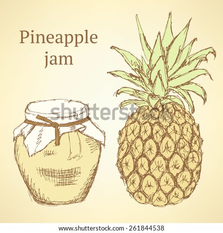 Sketch pineapple and jar in vintage style, vector