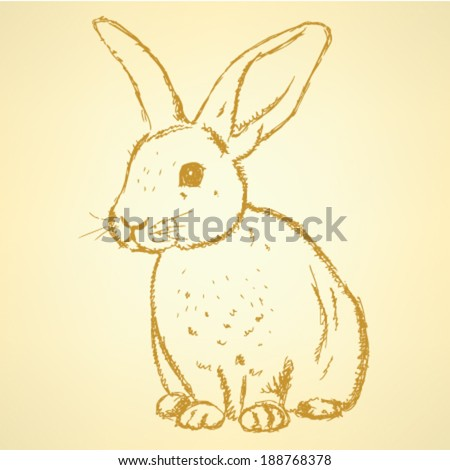 Sketch rabbit, vector vintage background - stock vector
