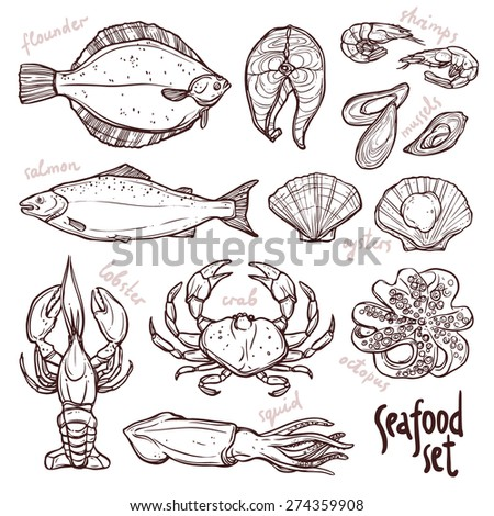 Sketch seafood collection, hand drawn illustration with lobster, squid, salmon, flounder, crab, octopus, mussels, oysters and shrimps on white background - stock vector
