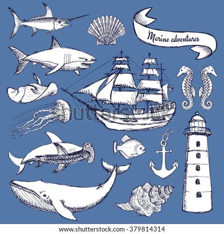 Sketch set of marine elements in vintage style, vector - stock vector