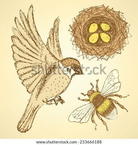 Sketch set with sparrow, bee and nest in vintage style, vector - stock vector