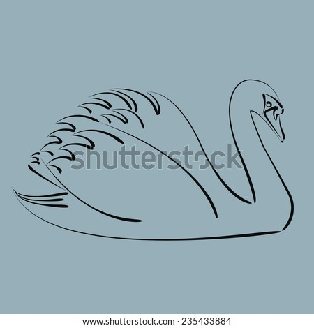 Sketched black swan. Harmonic colors. Background can be easily removed. Design template for label, banner, postcard, logo. Vector. - stock vector