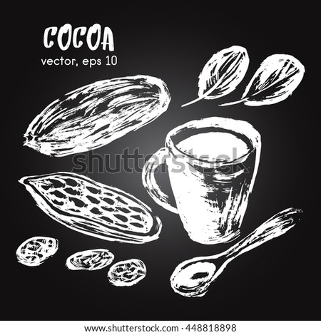 Sketched illustration of cocoa bean white on blackboard. Hand drawn brush food ingredient. Vector bio and eco icon, logo design template. Concept for healthy food.