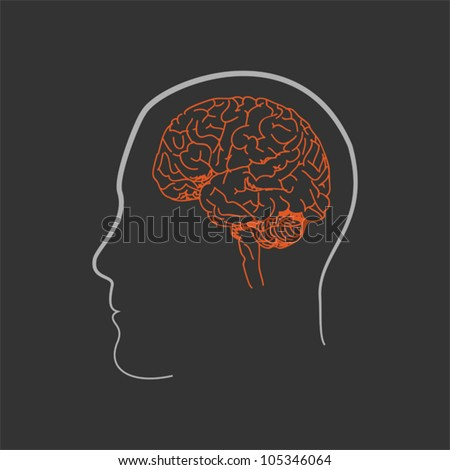 Sketched illustration on the human head and brain. - stock vector