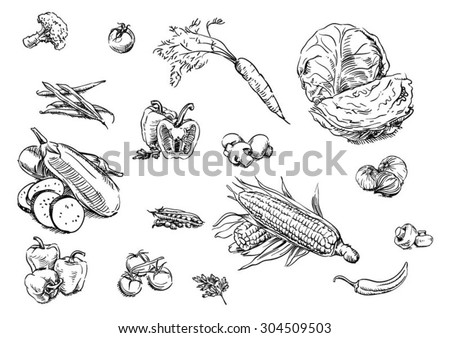 Sketches of food: vegetables
