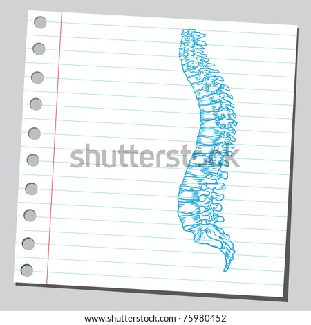 "Sketchy illustration of a ""human spine"""