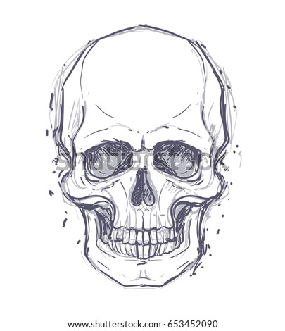 sketchy style drawing of human skull human head isolated on white tattoo design