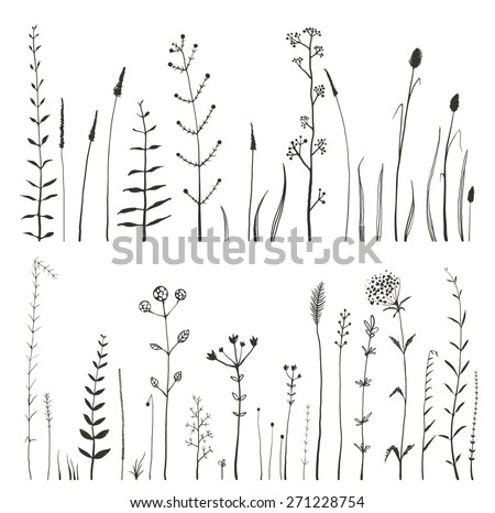 Sketchy Wild Field Flowers and Grass on White Monochrome Collection. Rustic colorful meadow growth illustration set. Vector EPS10. - stock vector