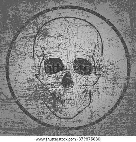 skull and grunge vector background. For printing on T - shirt