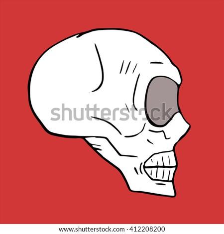 Skull illustration - stock vector