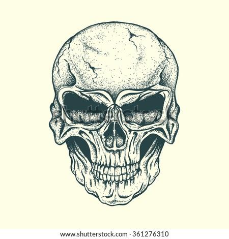 Skull of human .Vector illustration.Hand drawn style - stock vector