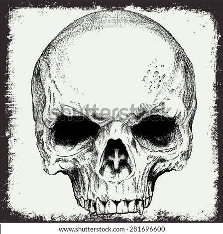 skull vector for t shirt print or element grunge design