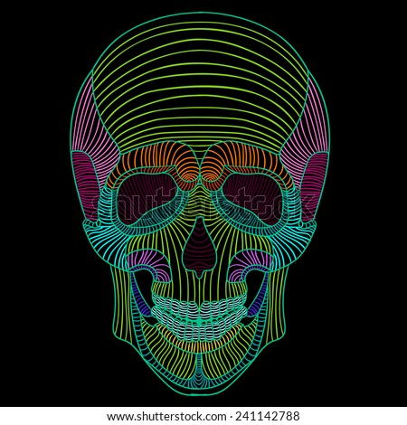 skull vector graphics in lines, printed on a T-shirt