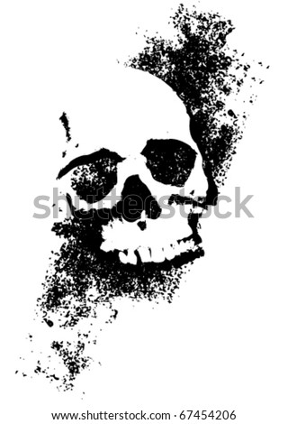 Skull with texture