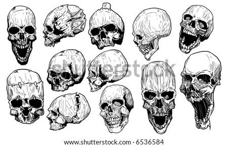 Skulls vector set - stock vector