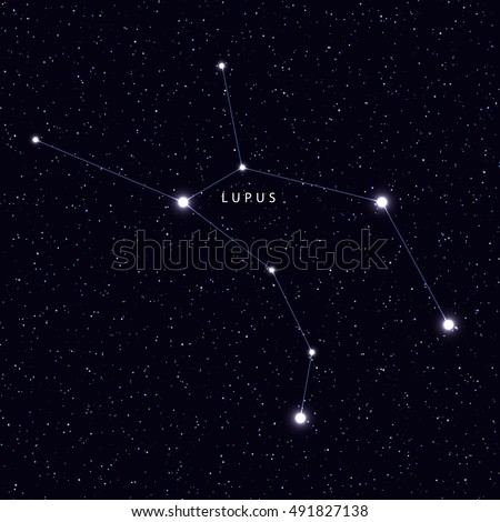 Sky Map with the name of the stars and constellations. Astronomical symbol constellation Lupus