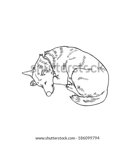 Sleeping Bear Outline