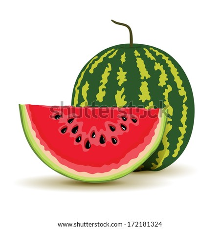 Slice and watermelon in vector - stock vector