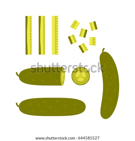 Sliced pieces of pickled cucumber. Concept of blanks and pickles. Flat vector illustration isolated on white background