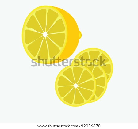 slices of lemon - stock vector