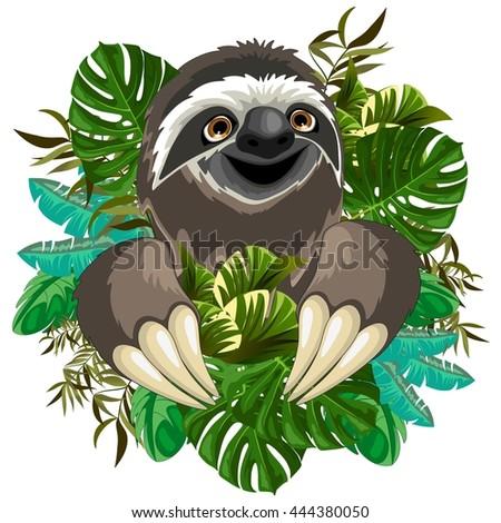 Sloth Cartoon on Tropical Jungle - stock vector