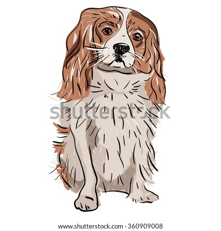small cute vector dog, scetch - stock vector