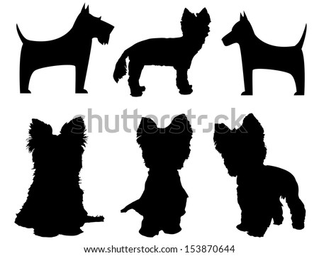 Small dog silhouettes  (Yorkshire Terrier and Schnauzer) - stock vector