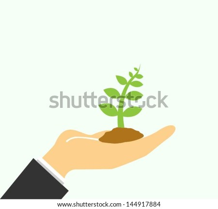 Small tree in a hand
