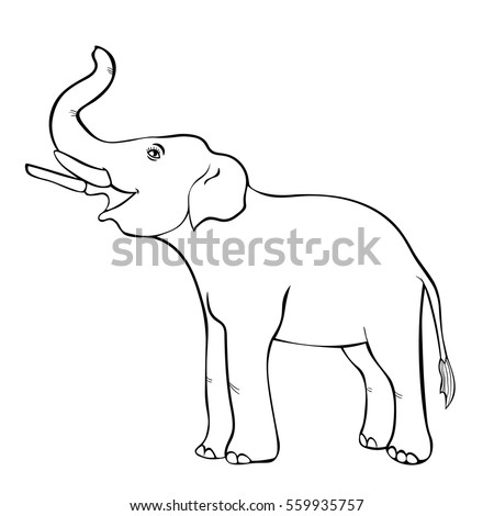 Elephant Trunk Up Stock Images