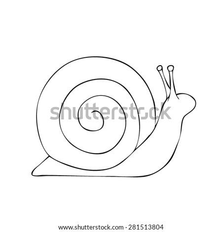 Snail - Drawn Outline Vector - stock vector