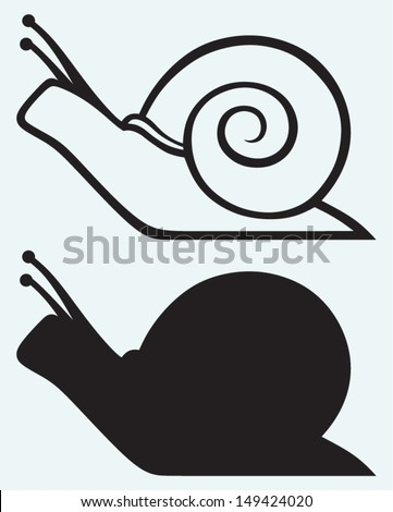 Snail isolated on blue background - stock vector