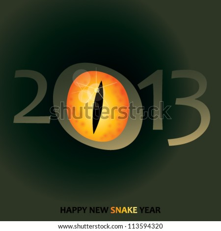 Snake eye / Chinese symbol for year 2013