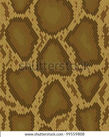 Snake skin, reptile seamless pattern - stock vector