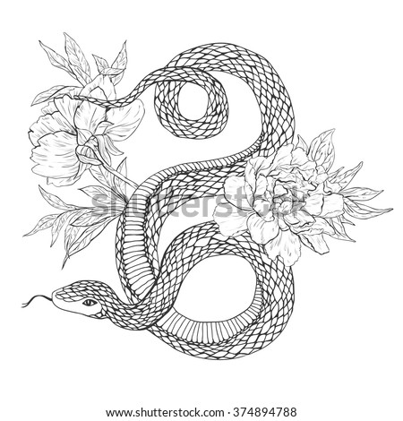 Tattoo Art Coloring Books Hand Drawn Vintage Vector Illustration Isolated