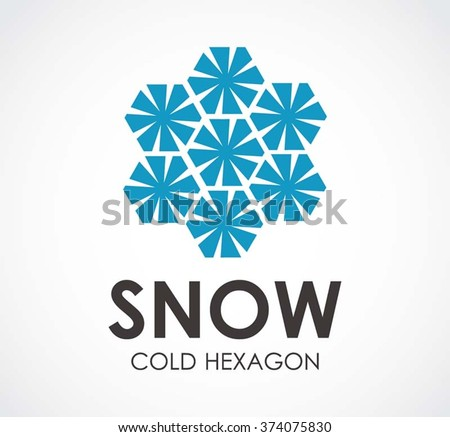 Snow cold of hexagon crystal abstract vector and logo design or template winter business icon of company identity symbol concept - stock vector