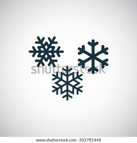 snowflakes icon - stock vector
